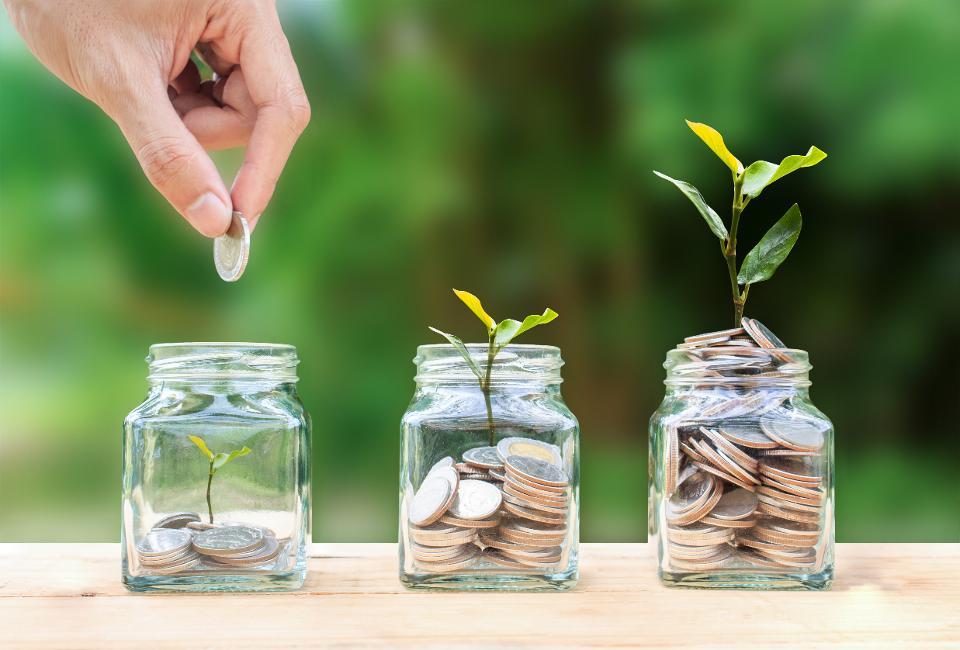 مدیریت سرمایه , مدیریت دارایی , سبد دارایی
